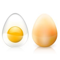 Animation: Ein durchsichtiges und ein herkömmliches Ei