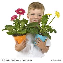 Blumentöpfe individuell gestalten