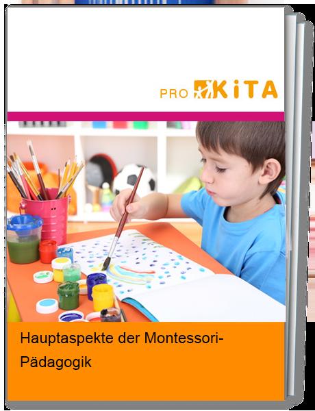 Aspekte der Montessori-Pädagogik