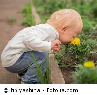 Kleiner Junge riecht an einer Blume