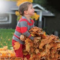 Ein sinnliches Blätterbad für die Kleinsten